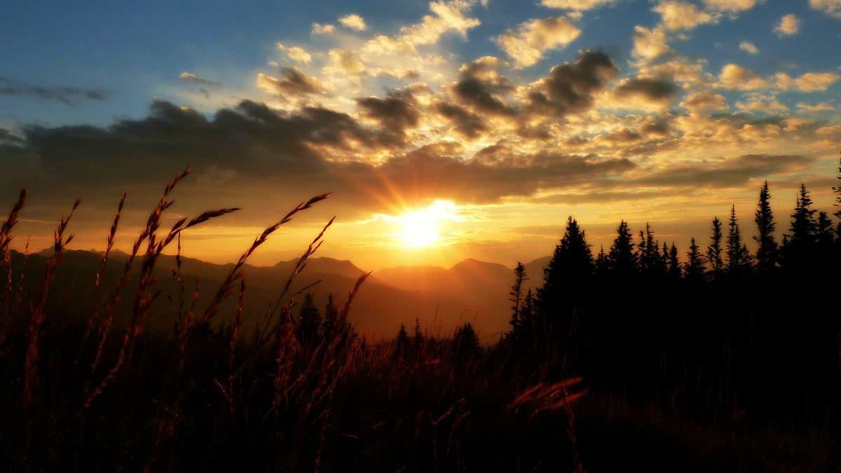 Morning Light >> Morning Light Counseling